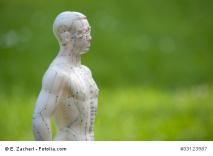 Foto Männerfigut mit Meridianen und Akupunkturpunkten (Fotolia)